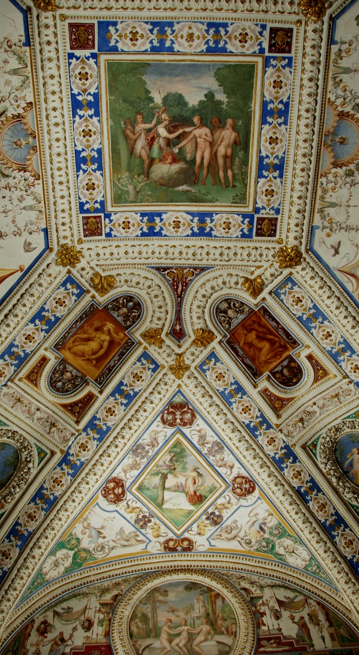 Room of the woolmakers.  Detail of the ceiling. Vault panel: Minerva teaches mankind to wear clothes.
